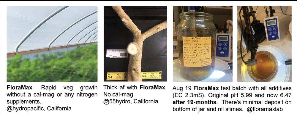 FloraMax_Test-batch-19-mths-old